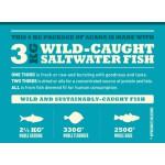 Wild Coast 17 kg